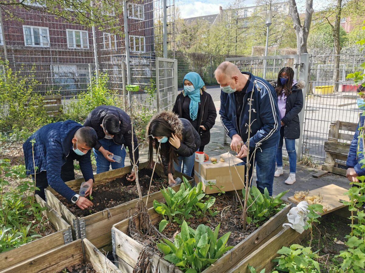 Deutsch lernen mal anders – 7iV pflanzt und erntet Kartoffeln